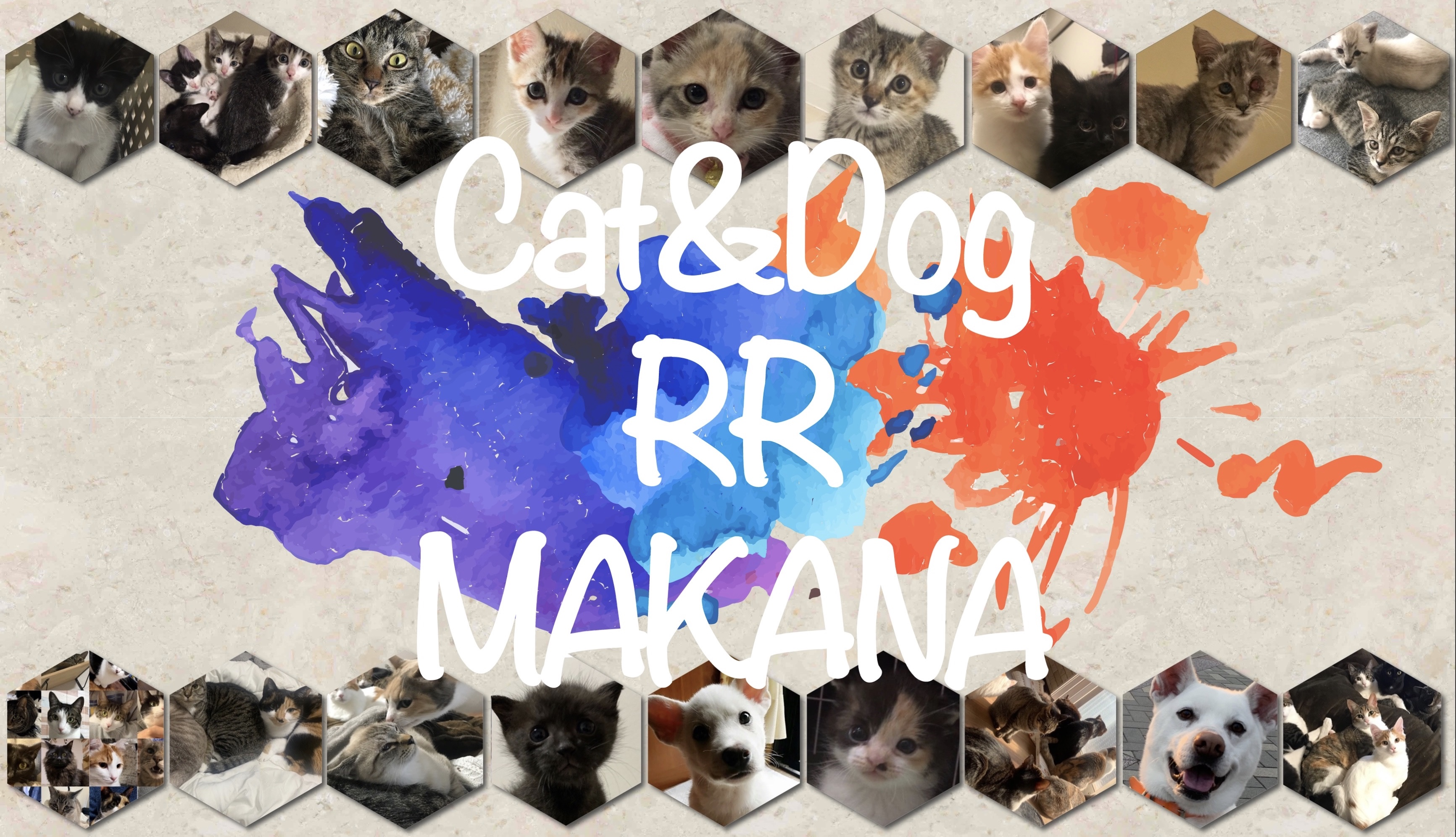 Cat&Dog RR MAKANA
